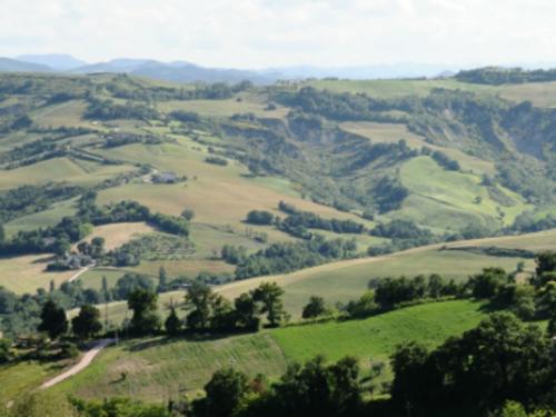 Cammino di Santiagoin Romagna di San Amato Ronconi
