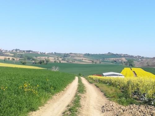 Cammino da Rimini a Roma a piedi